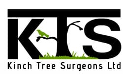 Kinch Tree Surgeons Tree Surgery in Maidstone Kent