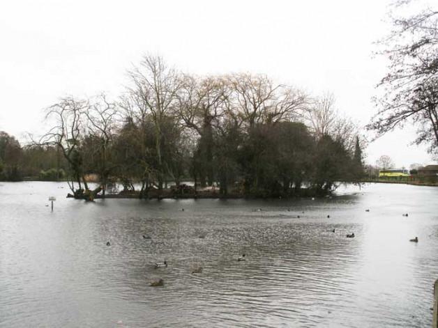 Hampden Park pond island clearance